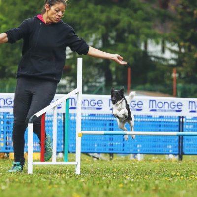 Gioia Baccega, addestratore cinofilo da 15 anni, si dedica all'agility a livello agonistico
